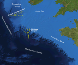 Submarine canyon - Heavily canyoned northern margin to the Biscay abyssal plain, with the Whittard Canyon highlighted