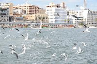 Port said egypt (6).JPG