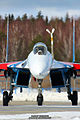 Portrait of Sukhoi (7105318077).jpg