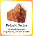 PrêmioPedra.png