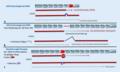 Prinzipien der Antisense-Oligonukleotid-Technologie (ASO-Technologie) und der Read-Through-Therapie.webp
