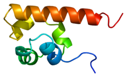 Protein EPHA4 PDB 1b0x.png
