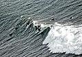 Pt. Fermin Surfers-1977.jpg