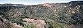 Puerco Canyon 3 (18476606084).jpg