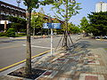 Pukyong Natl Univ by Ficell 008.jpg