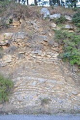 Purana Margalla is almost 40 million old rock layers of Margalla Range.jpg