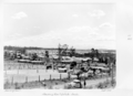 Queensland State Archives 4898 Housing Commission Estate Inala September 1953.png