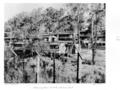 Queensland State Archives 4913 Housing Commission Estate Victoria Park October 1953.png
