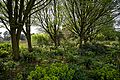 RHS Garden Hyde Hall, Essex, England - view west across hill garden 02.jpg