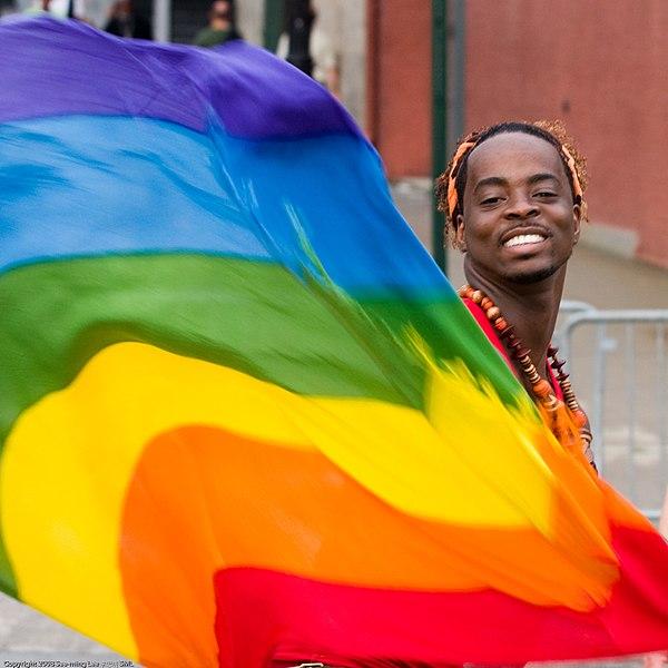 File:Rainbow Flag Gay Pride New York 2008.jpg