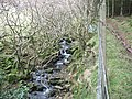 Rapids on Afon Nant Gwrtheyrn - geograph.org.uk - 681717.jpg