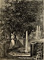 Recuerdos y bellezas de España - bajo la real proteccion de la reina y el rey; Obra destinada á dar á conocer sus monumentos y antiguedades en láminas dibujadas del natural y litografiadas por F.J. (14582250067).jpg