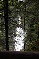 Reinbachfälle taufers 69790 2014-08-21.JPG