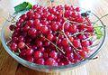 Ribes rubrum (Karelia).jpg
