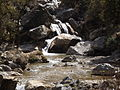 Rishikesh harikempty fallsdwar (384).JPG