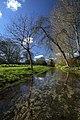 River Crane running through Cranborne Manor - geograph.org.uk - 373212.jpg