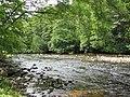 River Nairn - geograph.org.uk - 216049.jpg