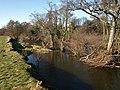 River Teign at Chudleigh Knighton - geograph.org.uk - 1171416.jpg
