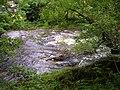 River Vyrnwy, Pont Llogel - geograph.org.uk - 509584.jpg