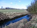 River Wid in Hylands Park - March 2013 - panoramio.jpg