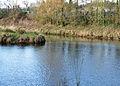 Rivers Dart and Hems.jpg