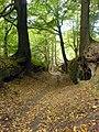 Robin Hood Way, through cutting - geograph.org.uk - 563790.jpg