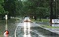 Roman Forest Flood - 4-18-16 (25907097424).jpg