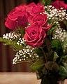 Roses (6255593451).jpg