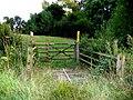 Rough bridge and gate - geograph.org.uk - 215139.jpg