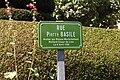 Rue Pierre Basile à Châlus.jpg