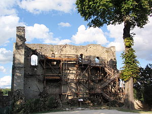 Château de Langeais - The ruins of the 10th-century keep