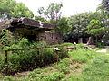 Ruins of Pinewood Battery 3.jpg
