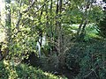 Ruisseau Ladoux Maurens près Carrière aval.jpg