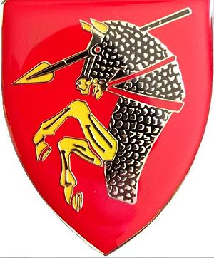46 South African Brigade - Image: SANDF 46 Brigade emblem flash
