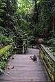 Sacred Monkey Forest Sanctuary - panoramio (5).jpg