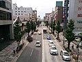 Sagami-Yume-Odori.jpg