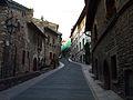 Salita verso Basilica di S. Francesco di Assisi.jpg