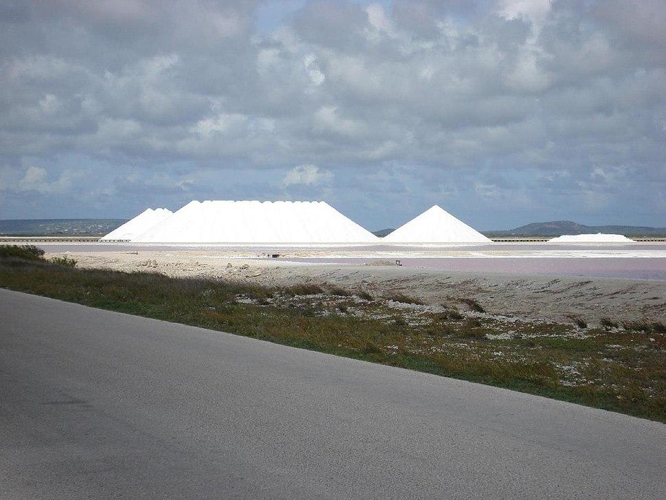 Salt City Bonaire (339352494)