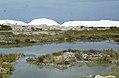 Salt heaps and Batis maritima pans. Inagua (37983862055).jpg