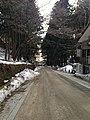 Sando of Nikko Futarasan Shrine 1.jpg