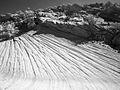Sandstone near Yellow Rock (3684296517).jpg
