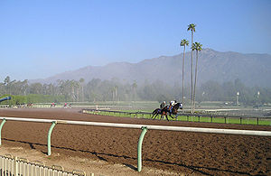 Santa Anita Park - The Santa Anita track is set against the backdrop of the San Gabriel Mountains.