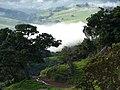 Santa Rita de Caldas - Subida da Serra para Pedra Branca - panoramio.jpg