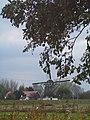 Schaapweimolen - Rijswijk - 2008 - panoramio.jpg