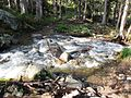 Second Gold Creek crossing - Flickr - brewbooks.jpg