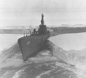 Sennet in the Antarctic Ocean during Operation Highjump in 1946