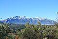 Serra de Mariola amb neu i oliveres.JPG