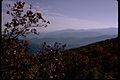 Shenandoah National Park SHEN9148.jpg