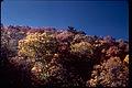 Shenandoah National Park SHEN9171.jpg