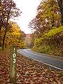 Shenandoah SkylineDrive Milemarker103 FallColors.jpg
